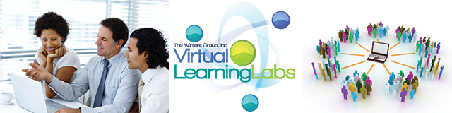 Virtual Learning Labs